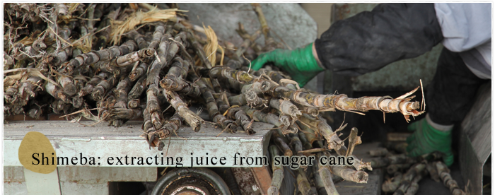 Shimeba: extracting juice from sugar cane